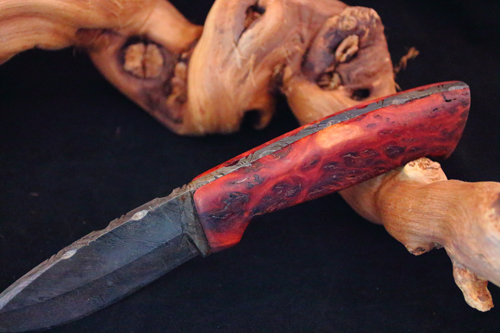 Red Coolibah Burl
